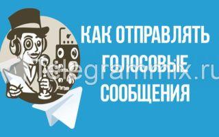 Как отправлять голосовые сообщения в Телеграмме